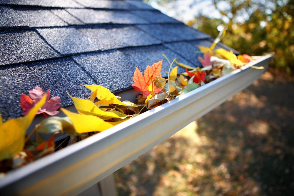 Prise en charge fuite de toit