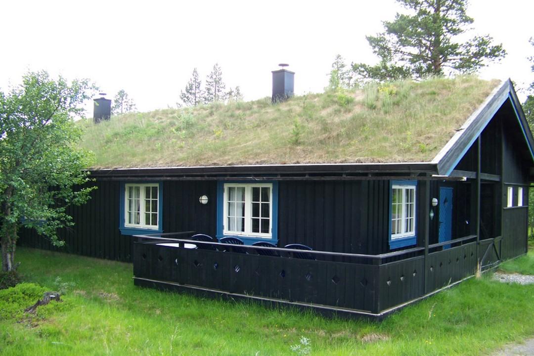 Coût produits entretien toiture